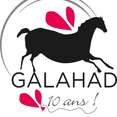 Refuge Galahad