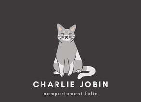 Charlie Jobin - Comportement Félin