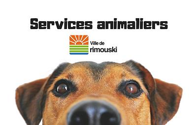 Services animaliers de Rimouski