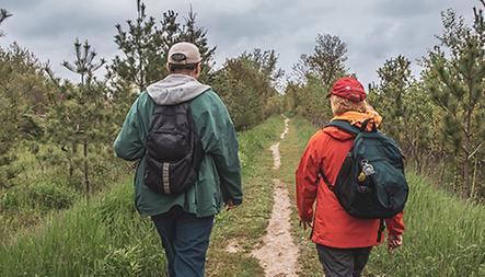 Cedar Trail and the Beare Wetlands Loop