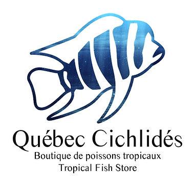 Québec Cichlidés