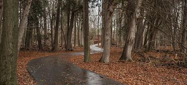 Monarch Trail