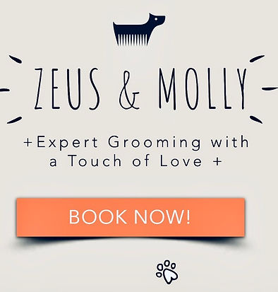 ZEUS & MOLLY Toilettage