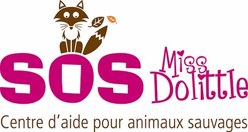 SOS Miss Dolittle