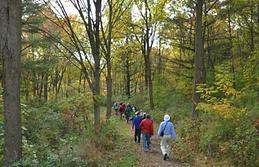 Reesor Way/Tanglewood Trail