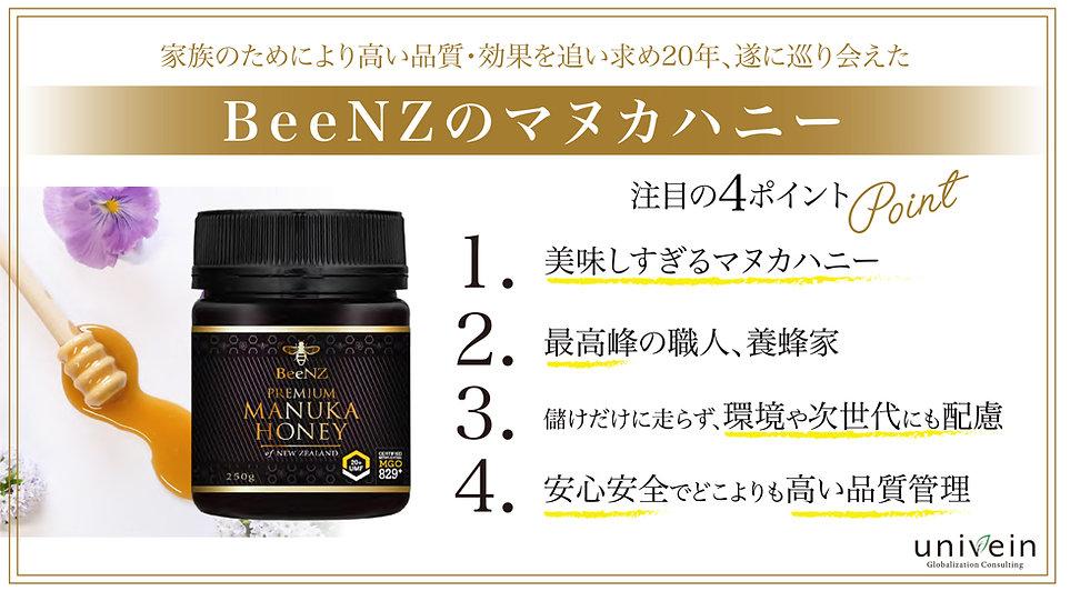 BeeNZご説明資料_short_New清水さん-03.jpg