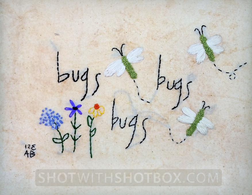 Embroidery on tea stained cloth
