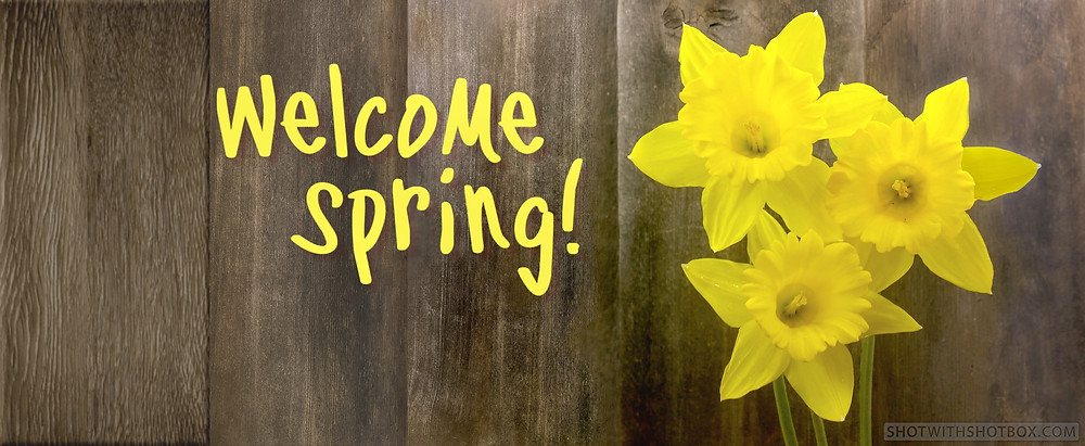 Welcome Spring!