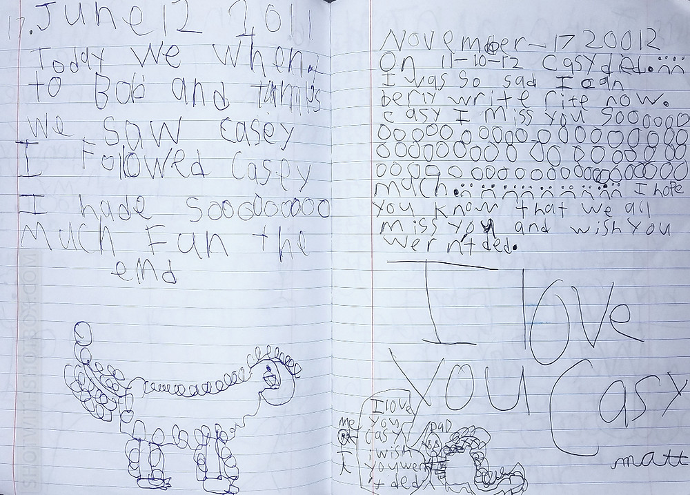 Matt's Journal Entry About Casey the Dog