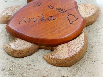 Wooden Turtle Box