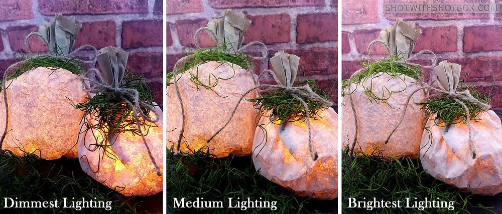 Pumpkin Luminaries Under 3 Different Lighting Settings