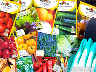 Seed Packets Wallpaper