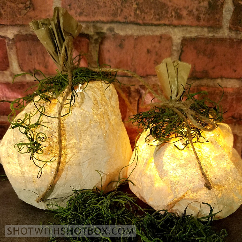 Pumpkin Luminaries Lit with Spot Lights