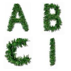 Alph 7.jpg