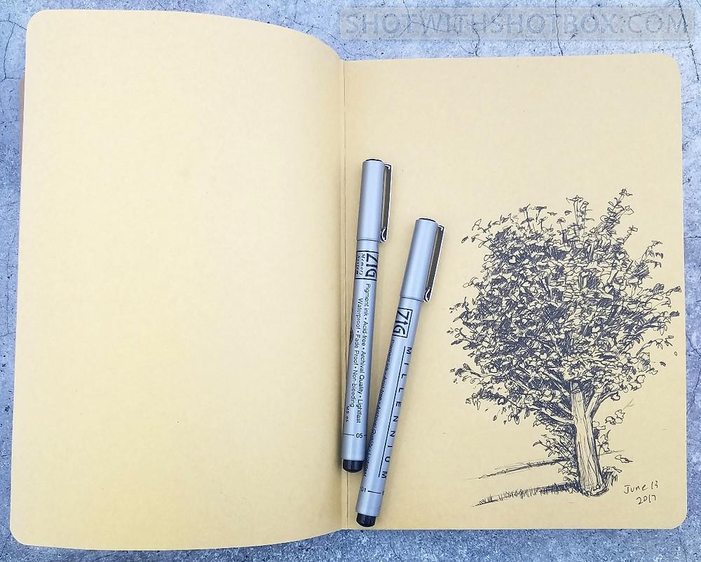 New Sketchbook: Page 1