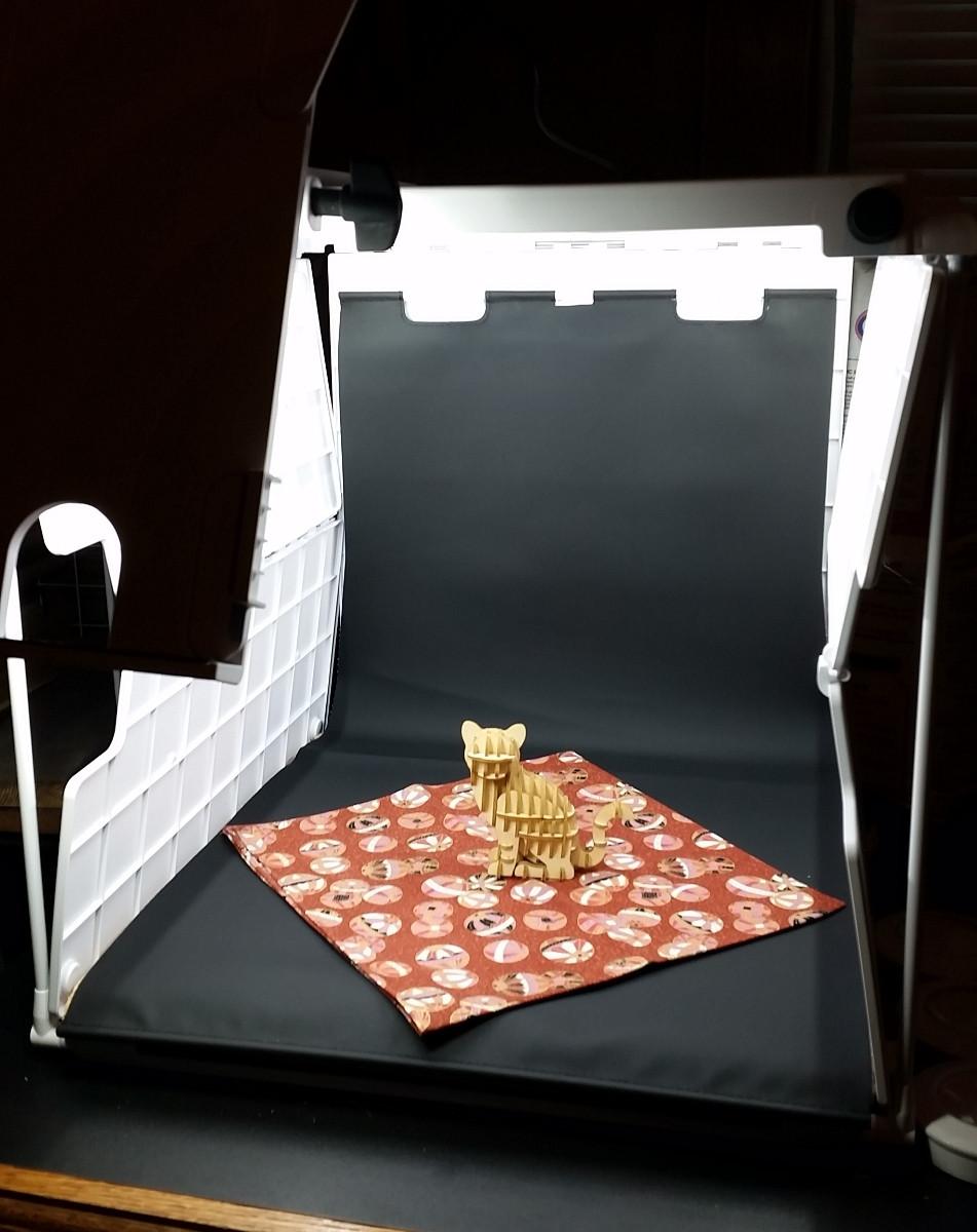 Shotbox Setup for Wooden Art Cat