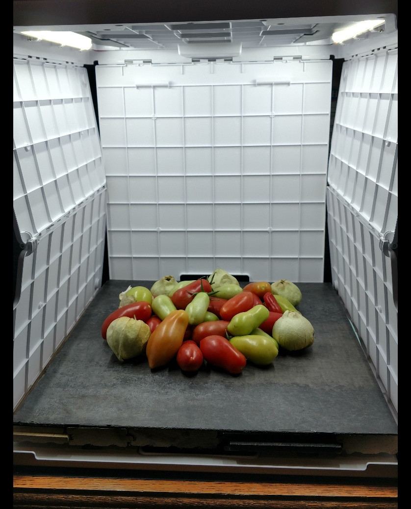 Tomatoes and Tomatillos Set Up