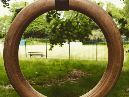 The Gymnastic Rings