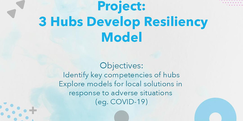 Hub Resiliency Project: Zone 1