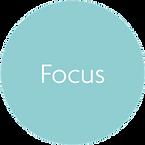 Flow - Focus.png