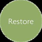 Flow - Restore.png