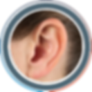 AudioServicios oído MiniRite