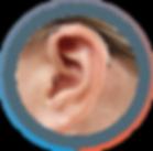 AudioServicios oído BTE CPx