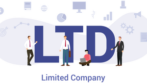 What is a Limited Company?