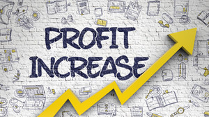 8 strategies to increase your profit margin (when you can't increase demand)