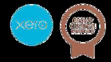 Xero_Bronze_Champion-removebg-preview.pn