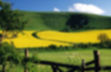 East Sussex Countryside: http://www.eastbourneguide.com/
