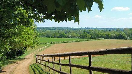 Essex Countryside: http://www.essexwalks.com/