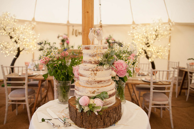 Bare wedding cake on a log slice
