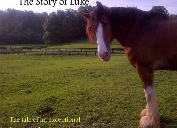 The Story of Luke - The Tale of an Exceptional Horse and His Friends