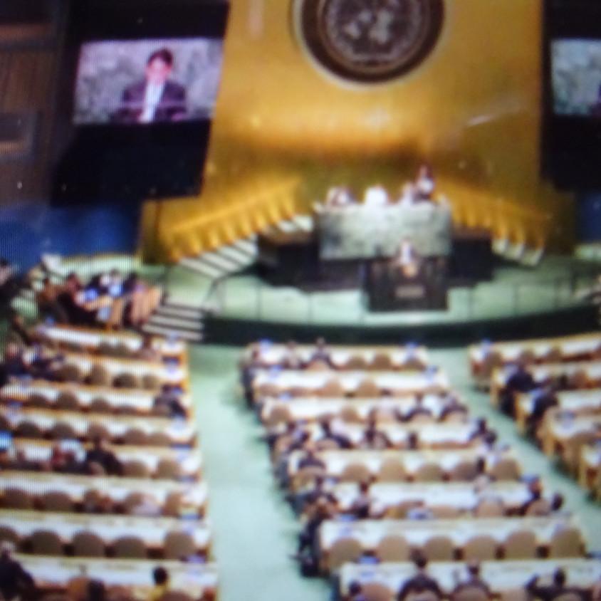 2020年4月29日(水・休日)「オンライン NPT再検討会議 2020」を勝手に開催します! に「9条地球憲章の会」は参加します。