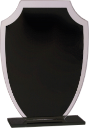 Premier Black Shield Reflection Glass