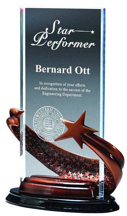 Bronze Star Rectangle Award