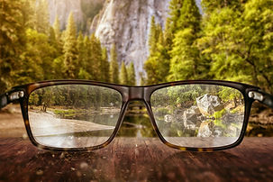 Langley Eyeglasses