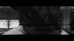 Maol(마올) - Gossip [Teaser]