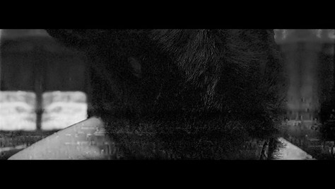 Maol(마올) - Gossip [Official Music Video]