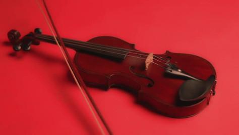 Violinist _ Nilufar