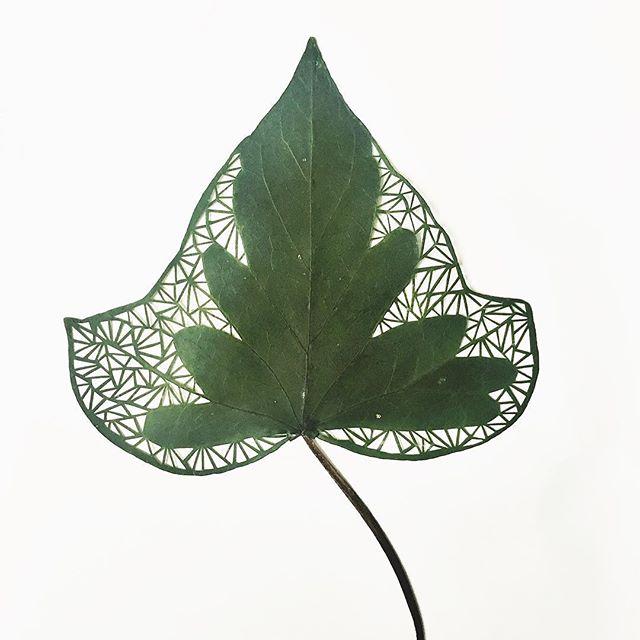 Hand Cut Leaf