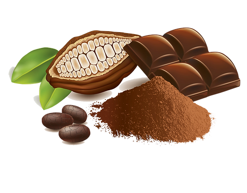 cacao-beans-with-chocolate-table-and-pow
