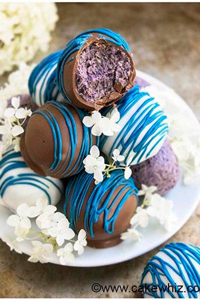 Blueberry Chocolate Truffles