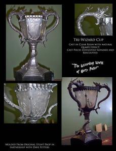 Tri Wizard Cup.jpg