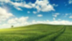 field-5236879_1920.jpg