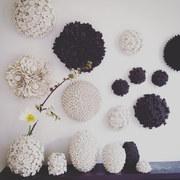 I fiori di Vanessa Hogge