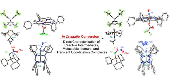 In Crystallo Organometallic Chemistry