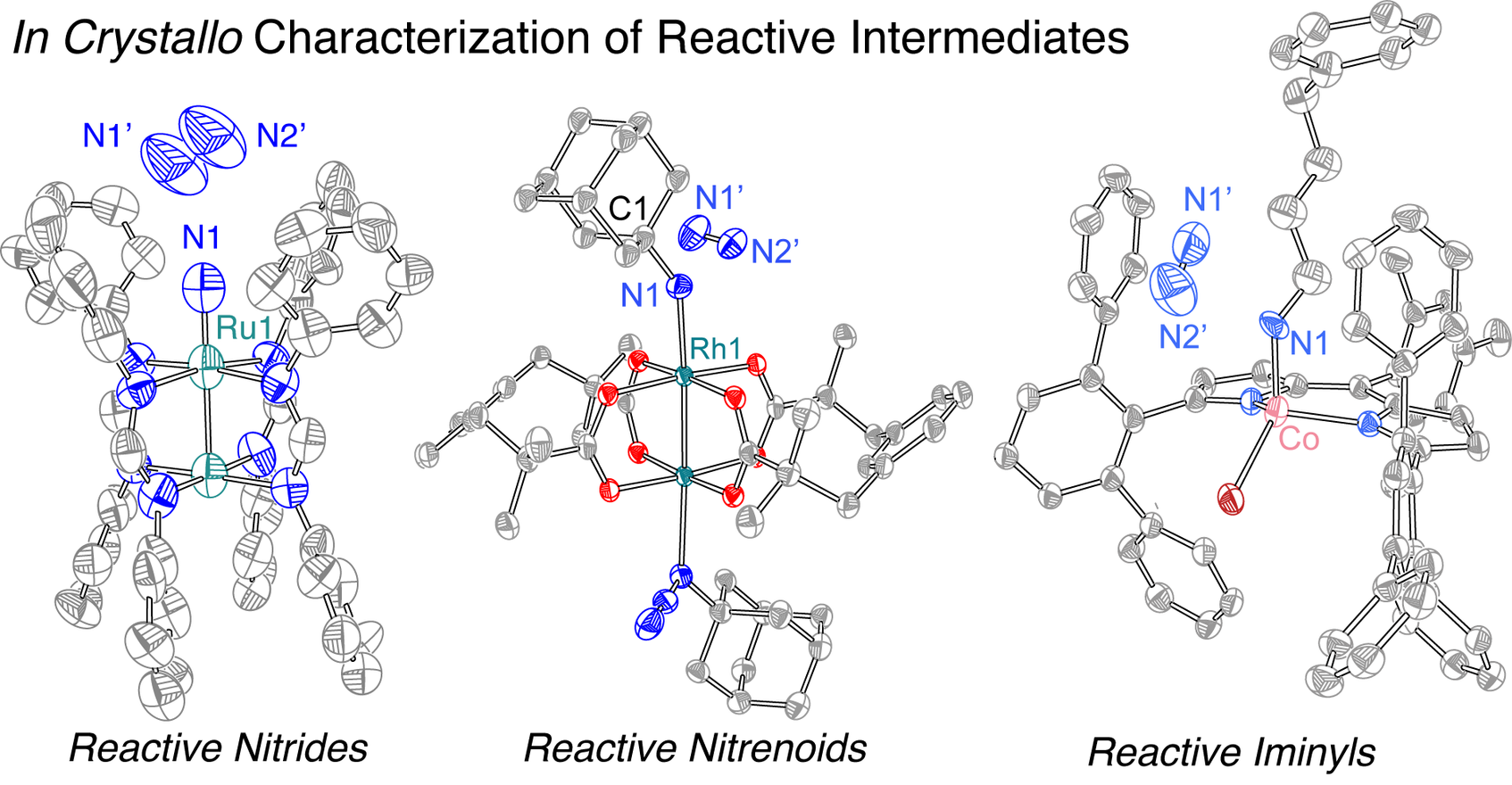 Crystallography of Reactive Intermediates