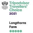 trip advisor 2.webp